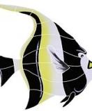 Logo Monogram Mozaik kolam renang, sangat cocok untuk diaplikasikan sebagai dekorasi dinding dan lantai kolam renang_2